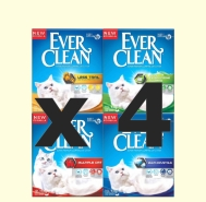 EVERCLEAN PROMOBOX  4 x 10LT
